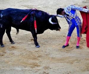 El Fandi - Torero