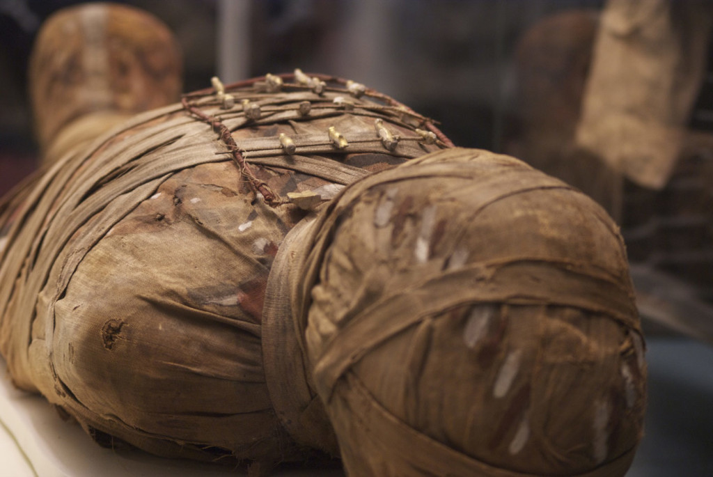 momia secretos museo britanico