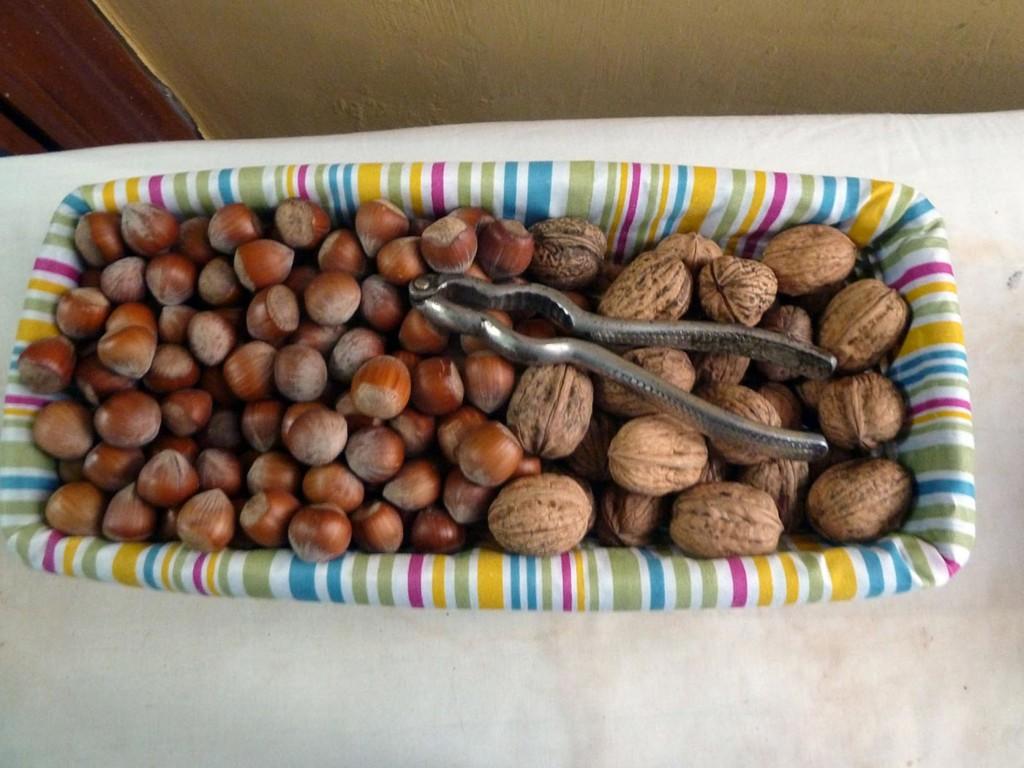 alimentos-permitidos-frutos-secos